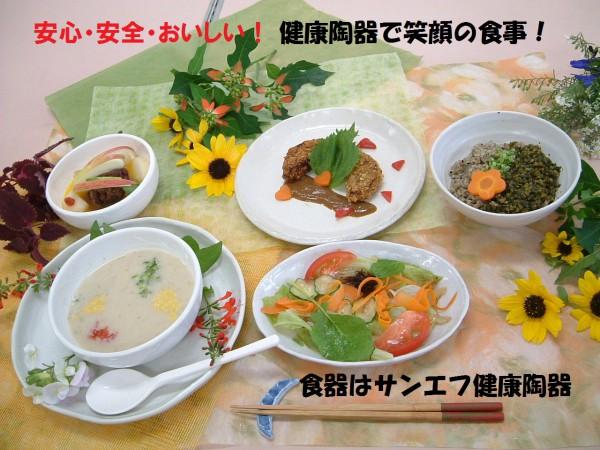 サンエフ健康陶器食卓